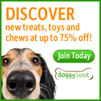 Discover New Treats, Toys, and Chews at Up to 75% Off at DoggyLoot.com