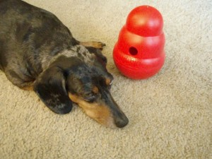 Li'l Girl With Kong Wobbler