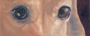 LittleBear - Eyes Painting