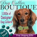 Thousands of Designer Dog Collars to Choose From
