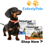 Save Up to 20% at Only Natural Pet Store